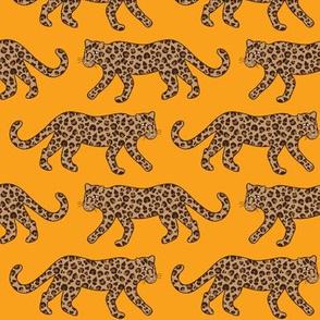 Kitty Parade - Classic on Tangerine - Medium Scale