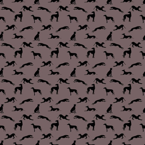 Greyt_Greyhound_Silhouettes_776366