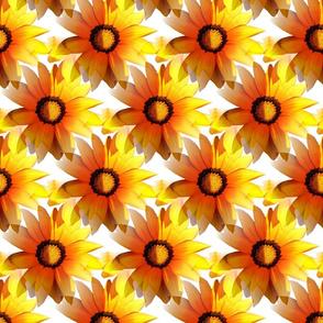 Yellow Summer Sun