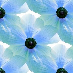Big Blue Blooms