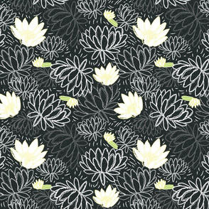 Water Lily A-01
