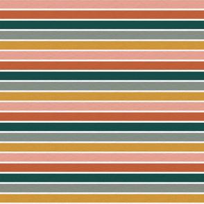 """Dusty Jewel Vintage Stripe (B) - 3/4"""""""