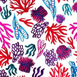 Corals mix