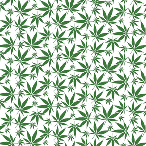 Cannabis leaves - green on white