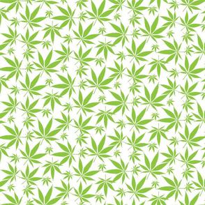 Cannabis leaves - avocado-green on white