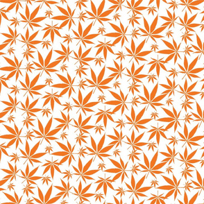 Cannabis leaves - orange on white