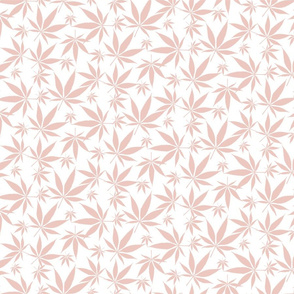 Cannabis leaves - petal pink on white