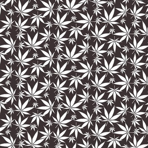 Cannabis leaves - white on dark grey