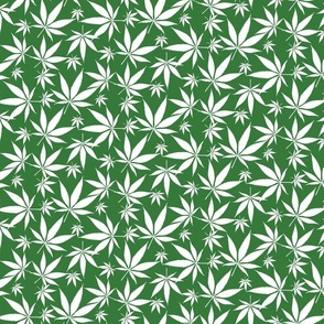 Cannabis leaves - white on green