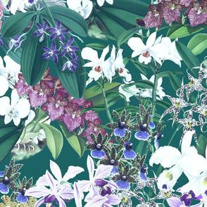 Mélange d'Orchidées on Teal 300