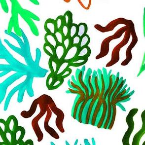 Teal corals mix