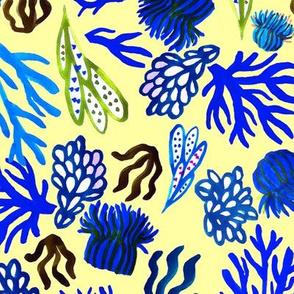 Blue corals mix
