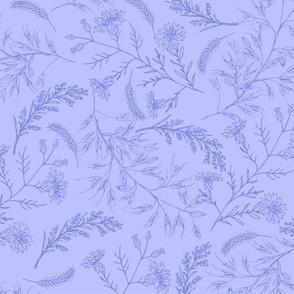 Purple line cornflowers and spike of oats