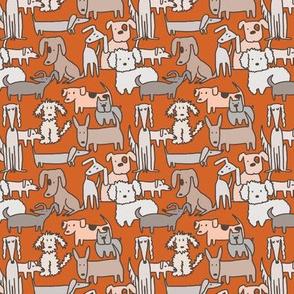 Dog Days in Orange