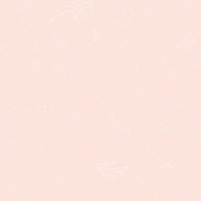 Annabelle - cream on rose