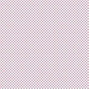 pinkDrose2