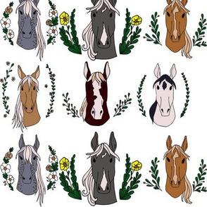 Horse Portraits Illustration