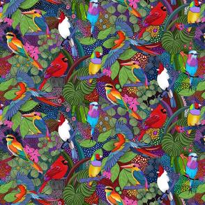 Bright Colorful Birds