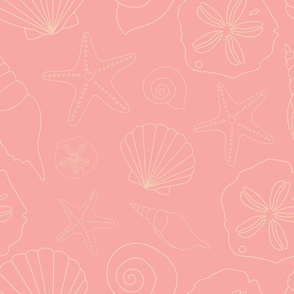 Pink shell outline