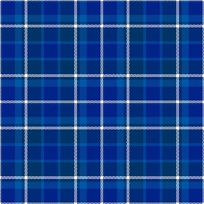 Blue Navy and White Plaid