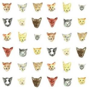 Watercolour happy cat faces