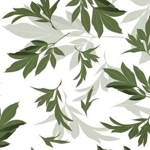 peony leaves toss - green foliage on white