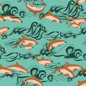 Save The Vaquita!