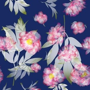 peonies transparent navy-pink