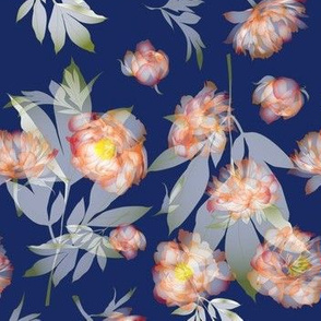 peonies transparent navy-orange