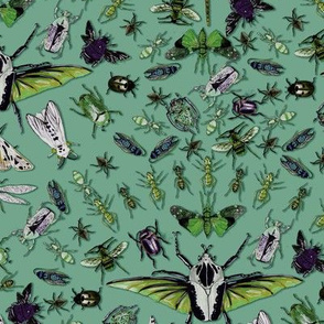 Insects Green