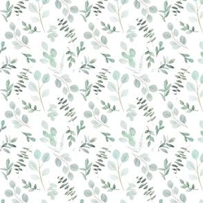 Blue green watercolor eucalyptus