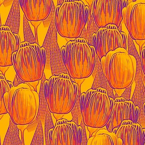 hot tulips