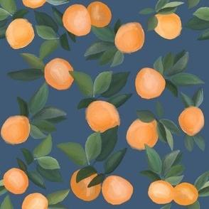 oranges scattered on dark blue