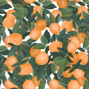 oranges - LARGE scale
