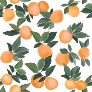 oranges scattered on white