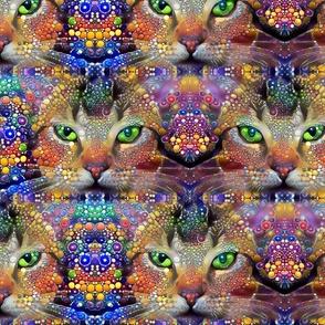 Celestial Cats