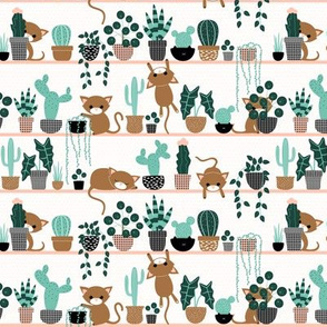 cats and plants - small