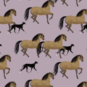 pferd schwarzer galgo lila2