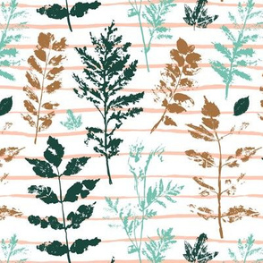botanical leaves  on white - medium scale autumn floral graphics