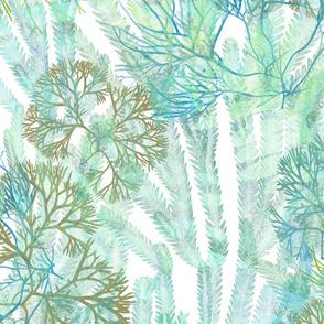 Seaweeds Soft Teal on White 150