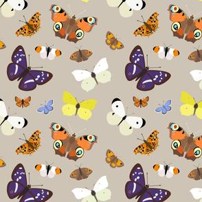 Butterflies on Buff - large scale