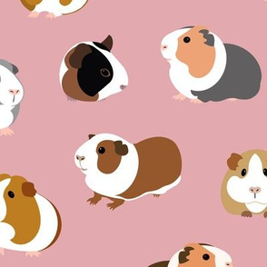 Guinea Pigs on Pink - large scale