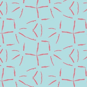 Starfish Imprint