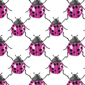 ladybug...we love