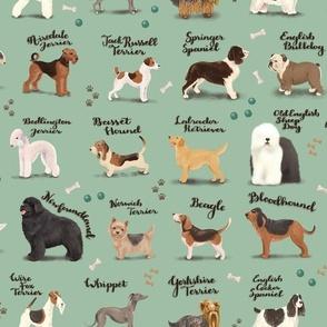Dog Breeds of the UK