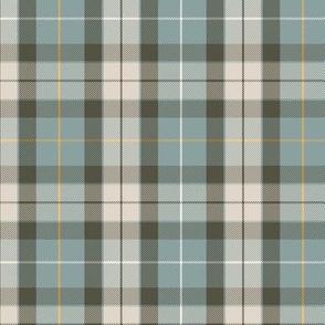 "Fraser hunting tartan, 6"", custom colors #2"