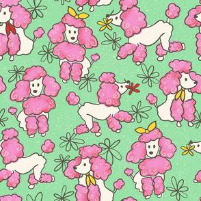Pretty Little Poodles