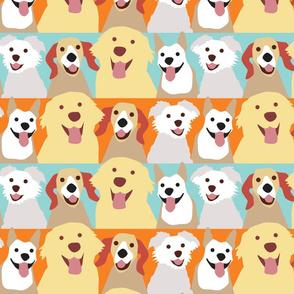 Happy Smiling Doggies