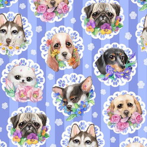 Lacy Dogs