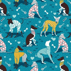 Small scale // Greyhounds dogwalk // turquoise background